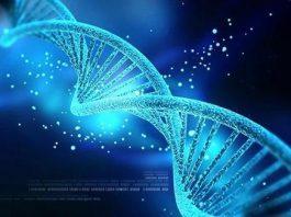 Veri Depolama Alanı DNA olabilir